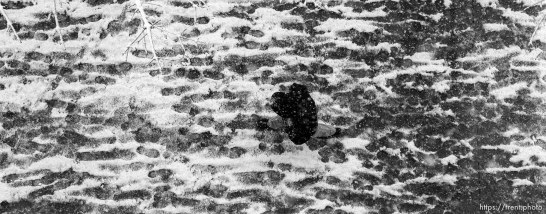 Man walking in snow.