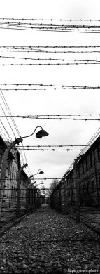 Barbed wire at the Auschwitz Concentration Camp.