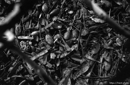 Utensils stolen from camp inmates at the Birkenau Concentration Camp.