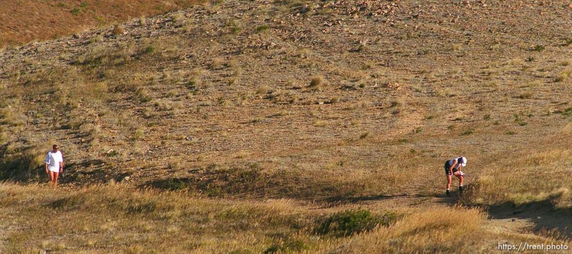 Runner retching near Francis Peak. Wasatch 100 Endurance Run.