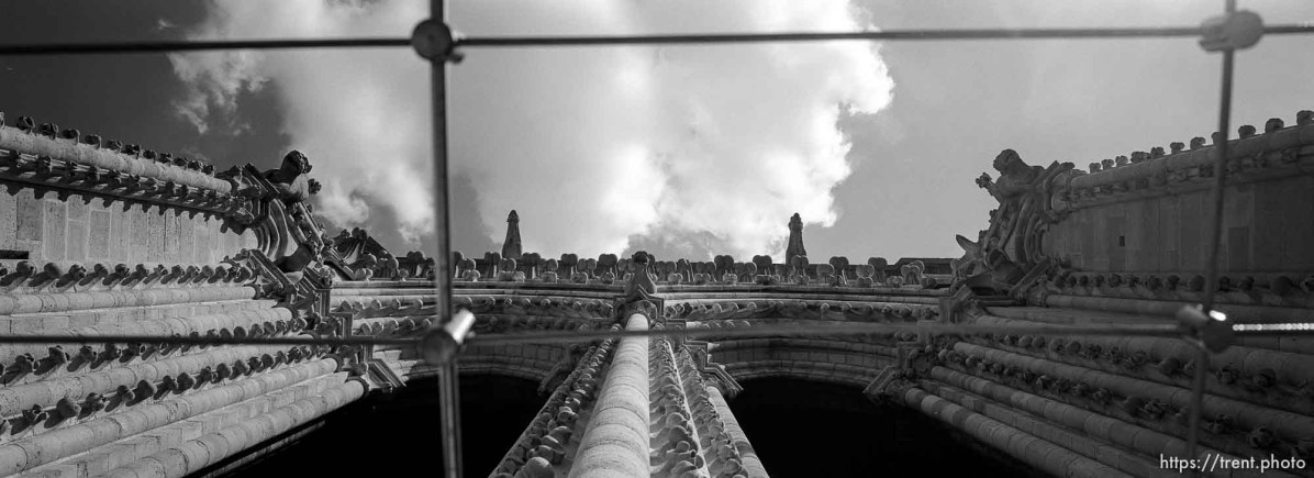 Looking up from mid-level Notre Dame