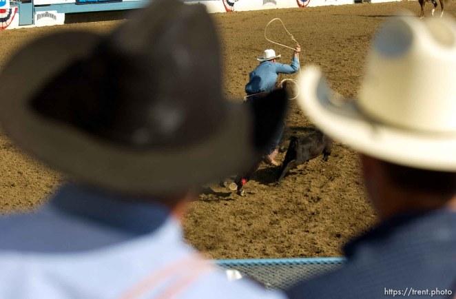 Calf-roping, Reno Rodeo