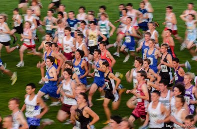 start of the boys race. Murray Invitation cross-country meet at Murray Park.
