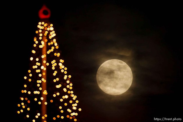 Salt Lake City - nearly full moon over a christmas tree display on a downtown high-rise, Thursday December 11, 2008.