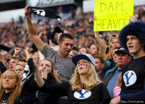 Trent Nelson | The Salt Lake Tribune BYU fans cheer on their team as BYU hosts Oregon State college football Saturday October 13, 2012 in Provo, Utah.