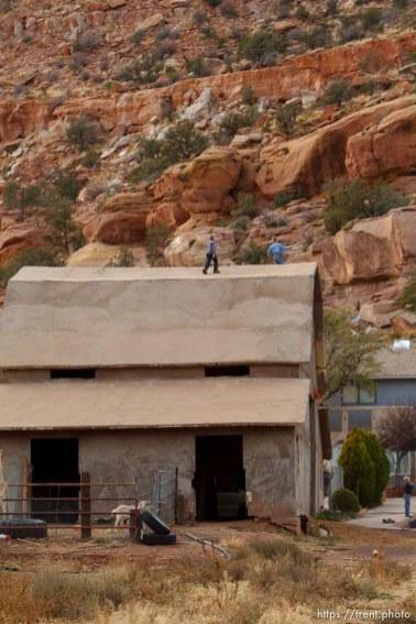 boys on roof of barn, Thursday November 29, 2012.
