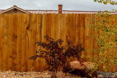 fence near united order center/warehouse/warren jeffs home, Friday November 30, 2012.