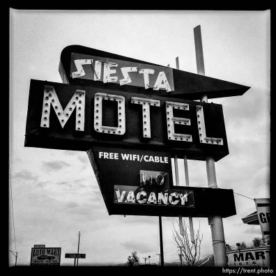 siesta motel sign, vacancy. south state project.