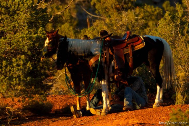 Trent Nelson | The Salt Lake Tribune couple under a horse in Hildale, Sunday, October 6, 2013.