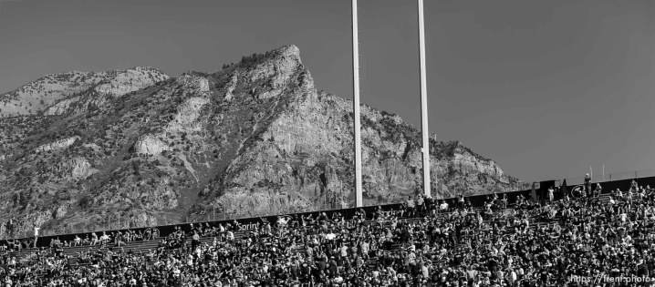 Trent Nelson | The Salt Lake Tribune A BYU fan finds the scenery outside the stadium of more interest as BYU leads Wagner 49-0 in the first half, NCAA football at LaVell Edwards Stadium in Provo, Saturday October 24, 2015.