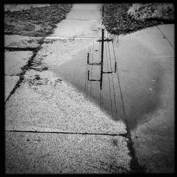 reflections on walk, Wednesday January 11, 2017.