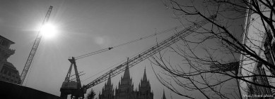 Construction cranes in front of the LDS Temple.