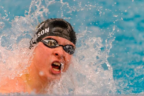 Wasatch's Chad Patterson in heat 3 of the Men 100 Yard Butterfly at the 4A state swimming championships in Provo, Saturday February 14, 2015.