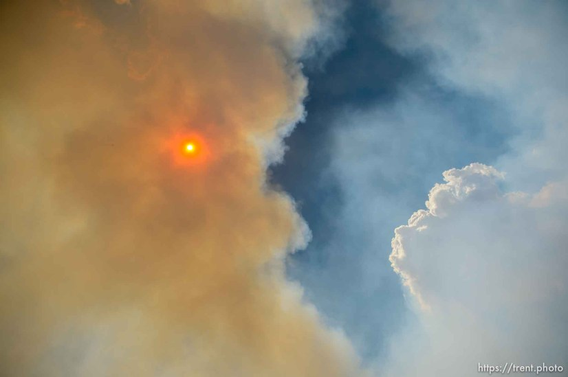 (Trent Nelson | The Salt Lake Tribune) The Dollar Ridge Fire in Duchesne County, Tuesday July 3, 2018.