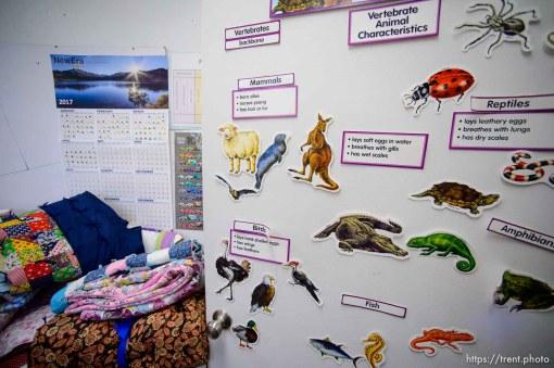 Trent Nelson | The Salt Lake Tribune flds homeschool, Monday May 8, 2017.