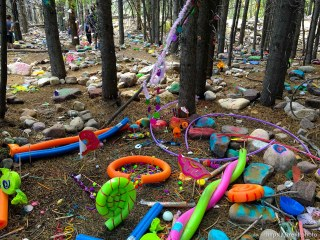 fairy forest, Monday August 8, 2016.