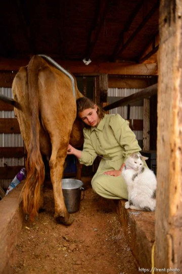 Trent Nelson | The Salt Lake Tribune flds girls milking cow, Tuesday May 9, 2017.