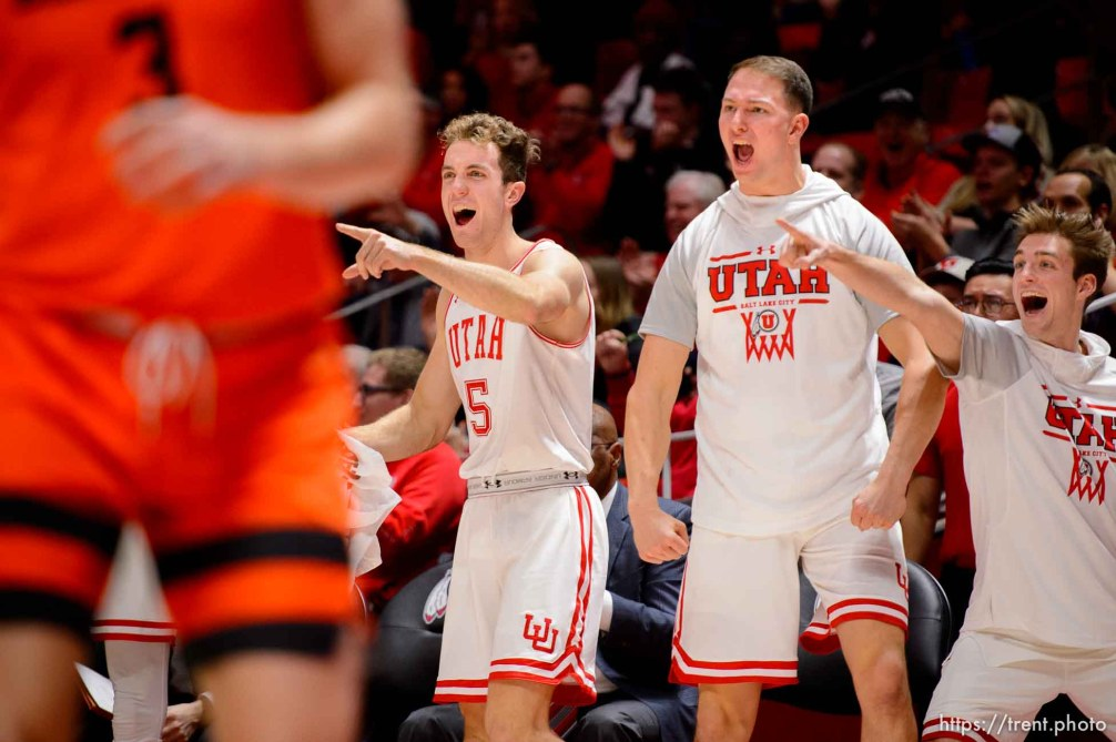 (Trent Nelson | The Salt Lake Tribune) Utah players on the bench celebrate a double digit lead in the final minutes as the University of Utah hosts Oregon State, NCAA men's basketball in Salt Lake City on Thursday, Jan. 2, 2020.
