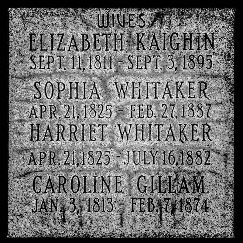 wives of John Taylor