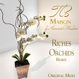 TB Maison Riches Orchids