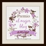 wpid premio mejor blog amigo1 - Segundo premio!!!