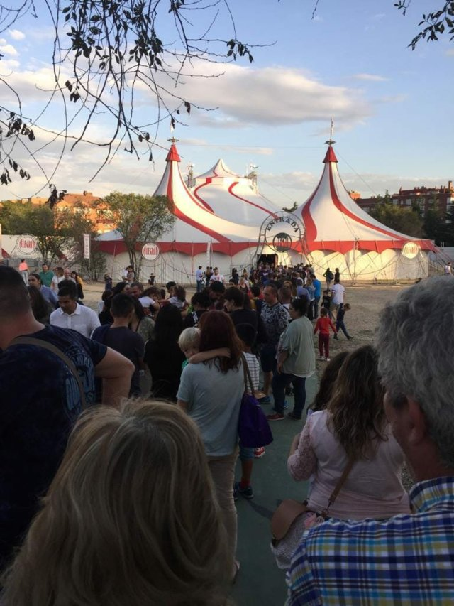 fb img 15709230932495360780567112188097 - Circos sin animales. Visita el Circo sobre Agua en Madrid