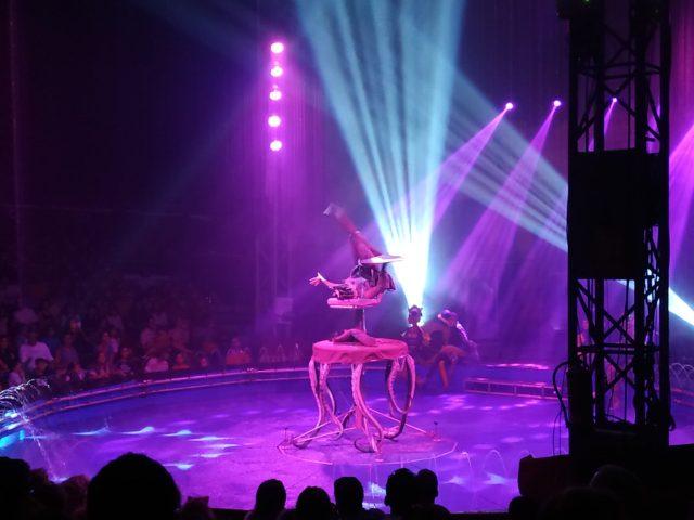 img 20191012 1657032509094166964436435 - Circos sin animales. Visita el Circo sobre Agua en Madrid