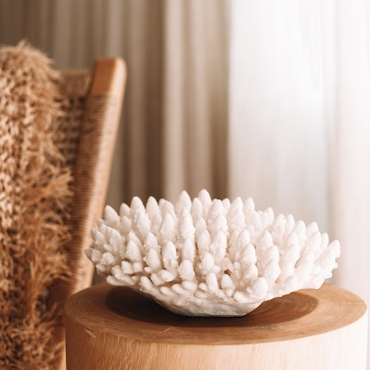 Decorative large finger coral piece