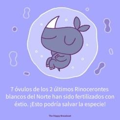 buenasnoticias-07-5dee5e9c38fa2__700
