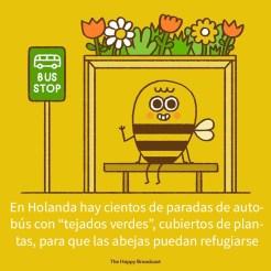 buenasnoticias-08-5dee5e9d79892__700
