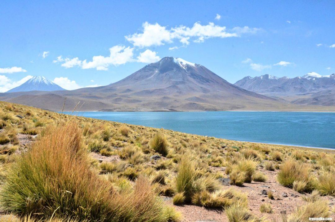 Chile - Atakama Laguna Miscanti - Monika Trętowska - Tresvodka