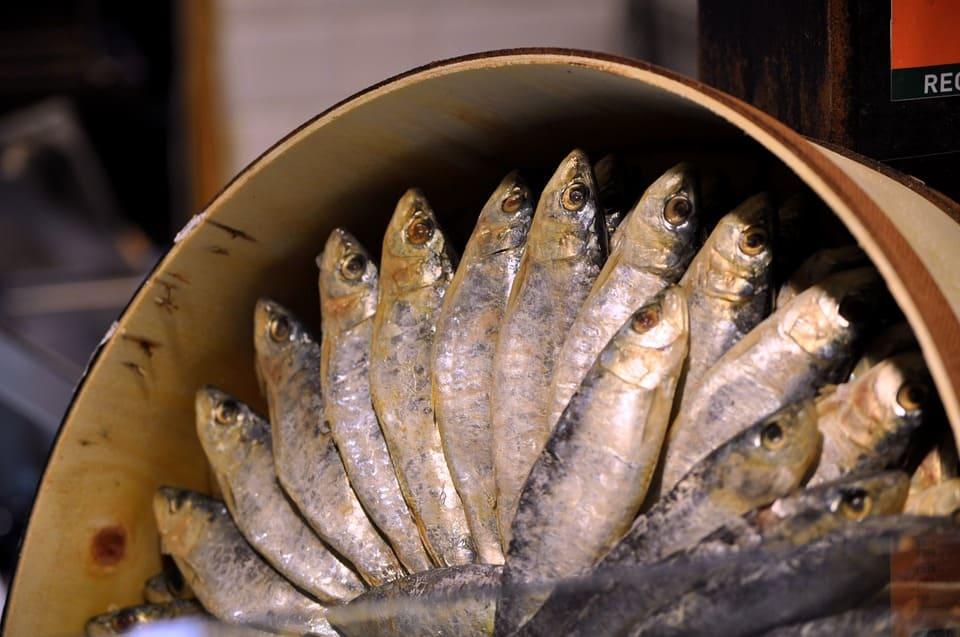le alici vengono precedentemente messe sotto sale, con un peso sopra, che permette di far risalire in superficie la colatura.