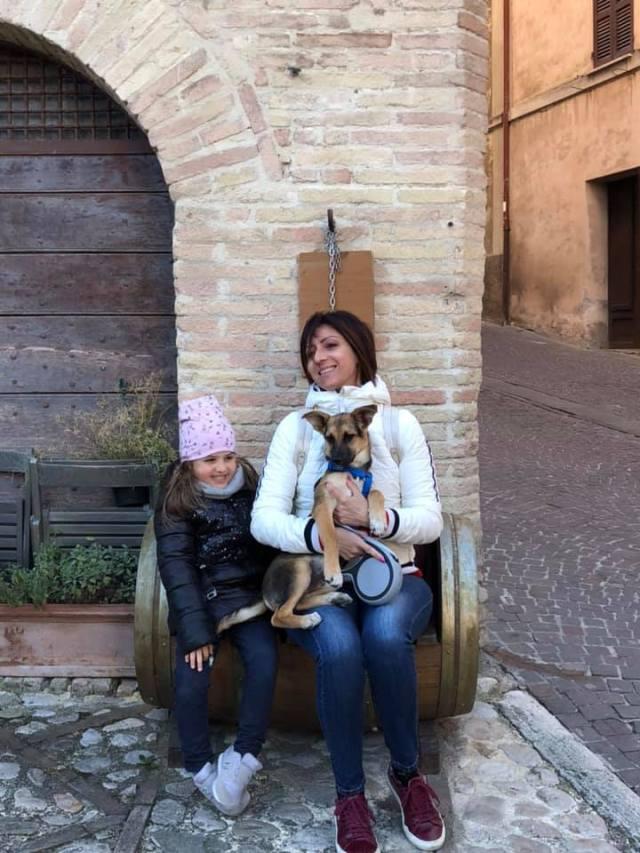 Viaggiare con il cane, organizzare un week end con il cane, trevaligie