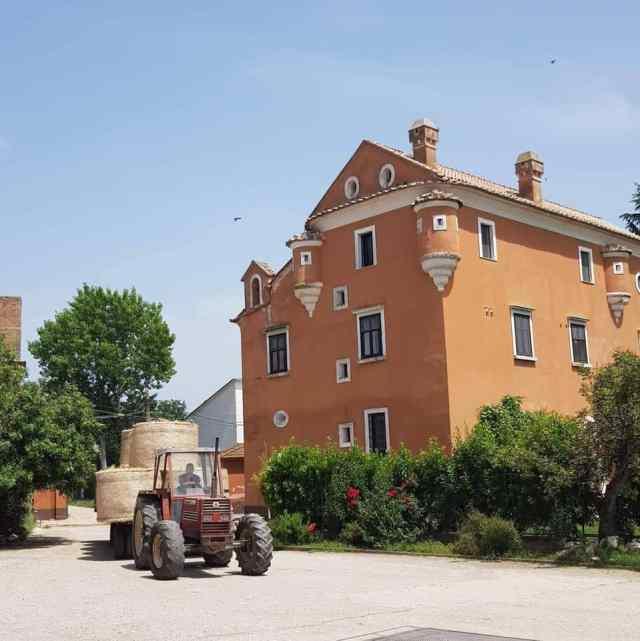 Torre lupara, produzione latte bufala, trevaligie