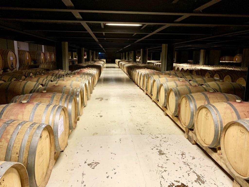 Wine tasting, Irpinia, cantine dei feudi di San Gregorio, trevaligie