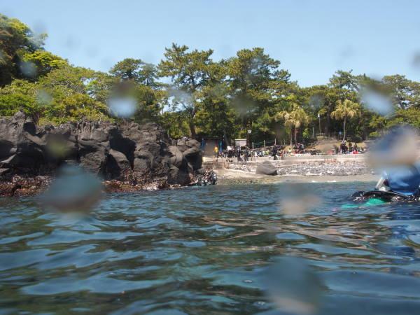 伊豆海洋公園エントリー