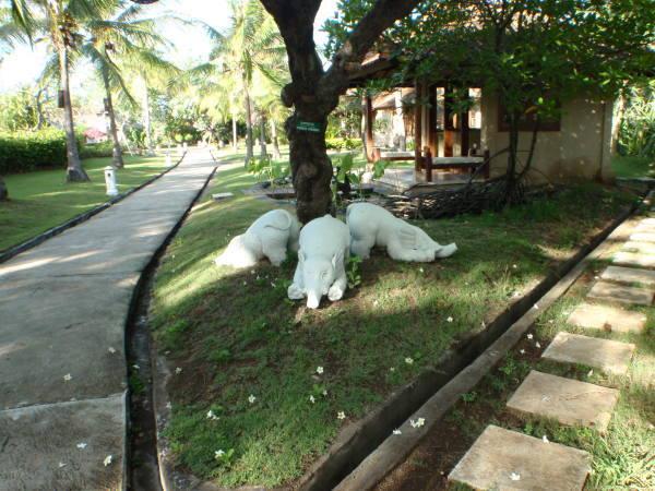 3匹のゾウ