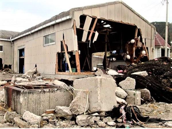 伊戸の台風21号の被害