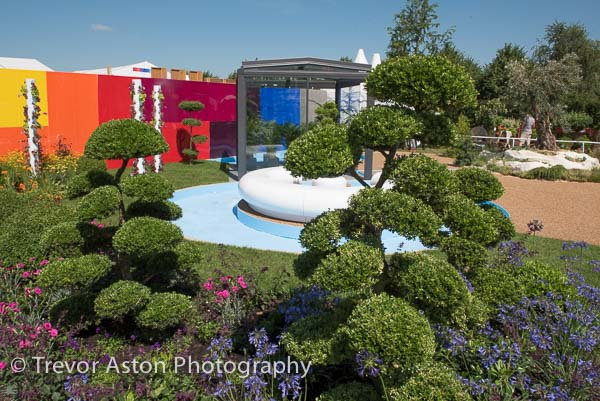 garden design video exhibition photographer Hampton Court