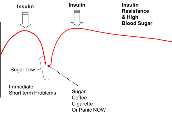 Trevor Gunn Homeopath Fig 4 Blood Sugar - Insulin Resistance