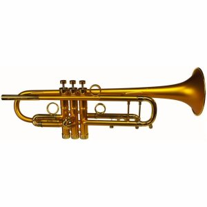 Bach Taylor Hybrid Trumpet 1
