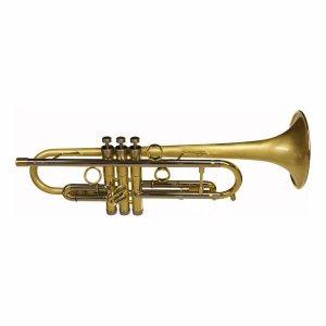 Tayor Chicago Storm Trumpet