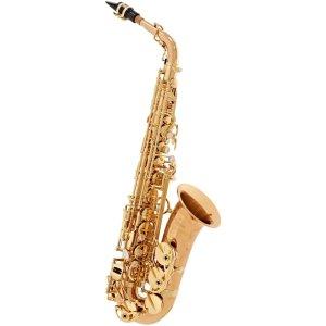 Yanagisawa AWO20 Alto Saxophone