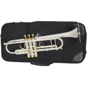 Second Hand Arnolds Terra Trumpet