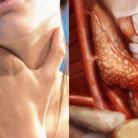 Елементарна напитка вкарва всички хормони в норма, а щитовидната жлеза заработва като часовник!