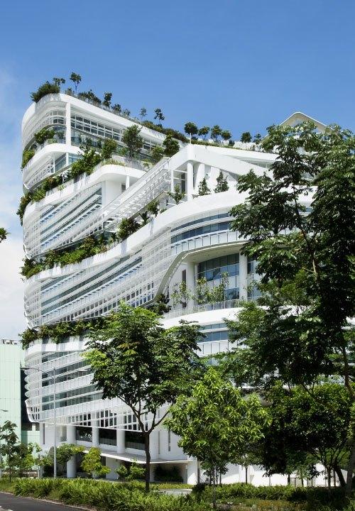 Solaris image 2 for ecological architect setup
