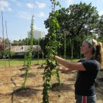 Urban ag seen as model for generating income in High Point