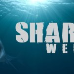The Weekender: The Shark Week Edition
