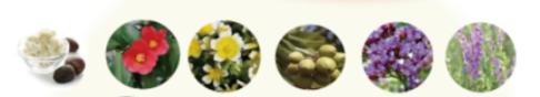 植物オイル