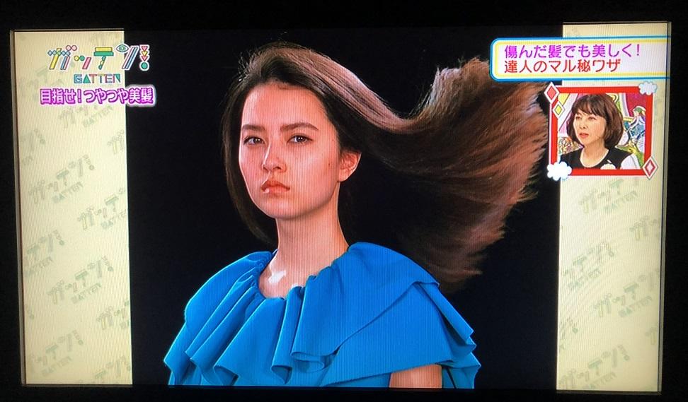 ためしてガッテン 髪